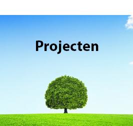 projecten2